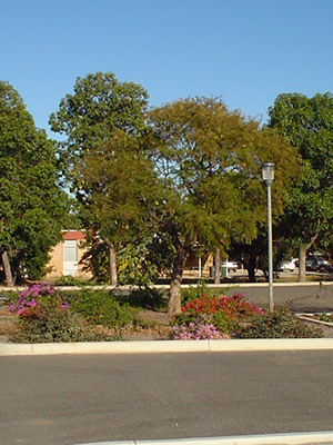 Wongan-Ballidu Civic Centre